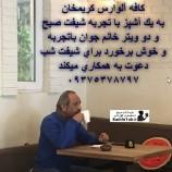 استخدام کافه آلوارس در کریمخان