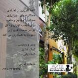 کافه کارزین در شعب تهران و متل قو از علاقه مندان دعوت به همکاری می کند