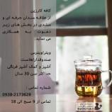 کافه کارزین از افراد مبتدی و حرفه ای درچندین بخش دعوت به همکاری میکند